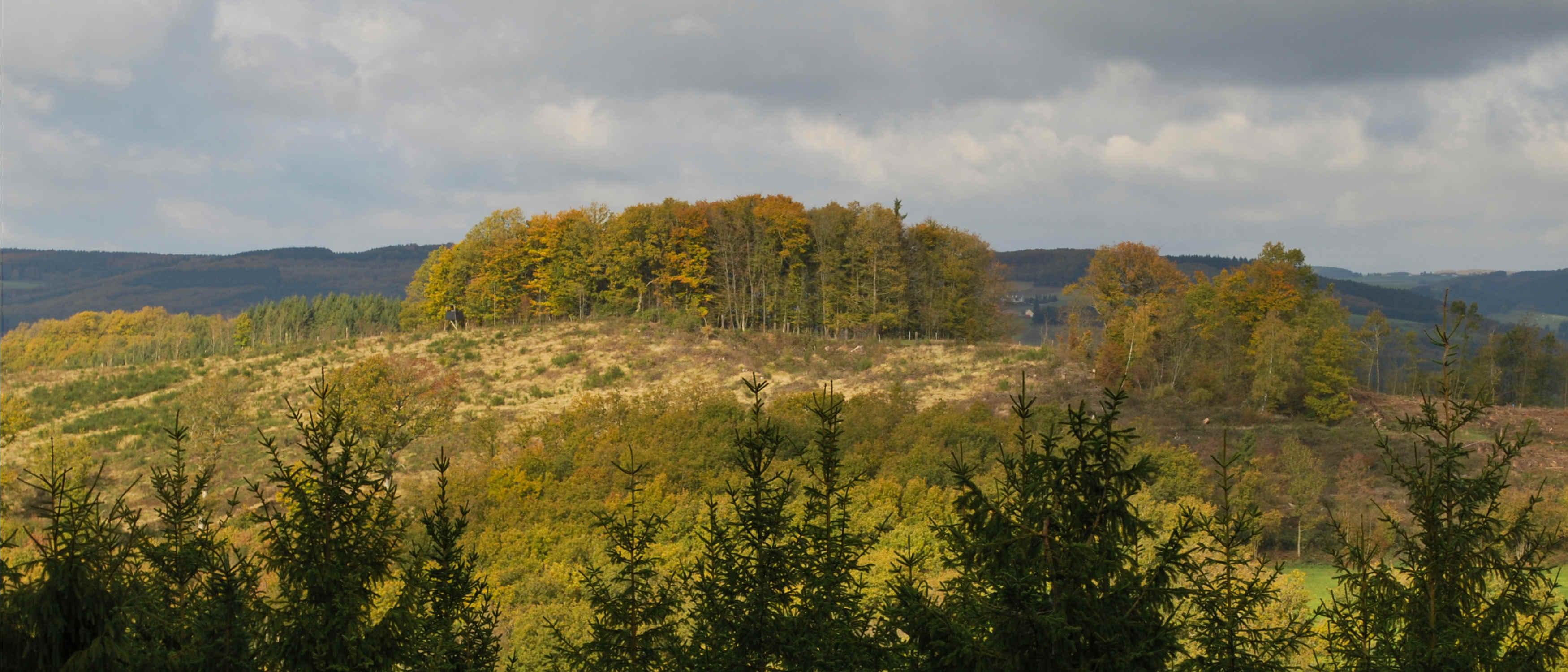 Le Kiischpelt